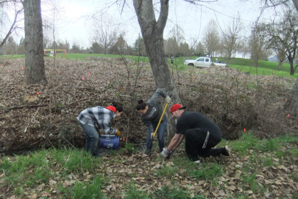Rogue Community College earn community service credit by working on Bear Creek.