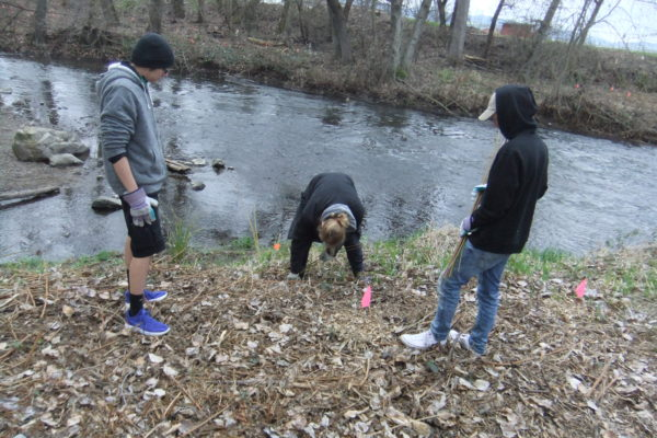 South Medford students planted native species at where Lazy Creek enters Bear Creek.