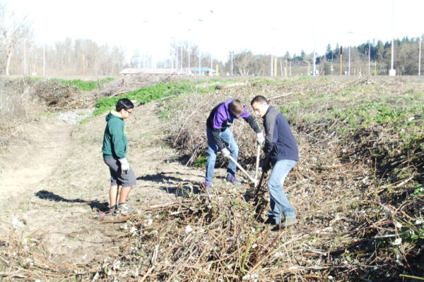 Medford students clearing brush on Bear Creek.